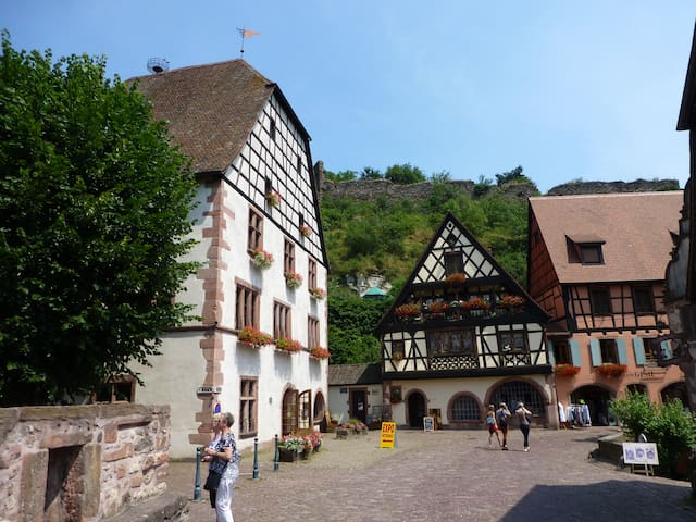 Sweet home in the old Kaysersberg - Kaysersberg - 獨棟