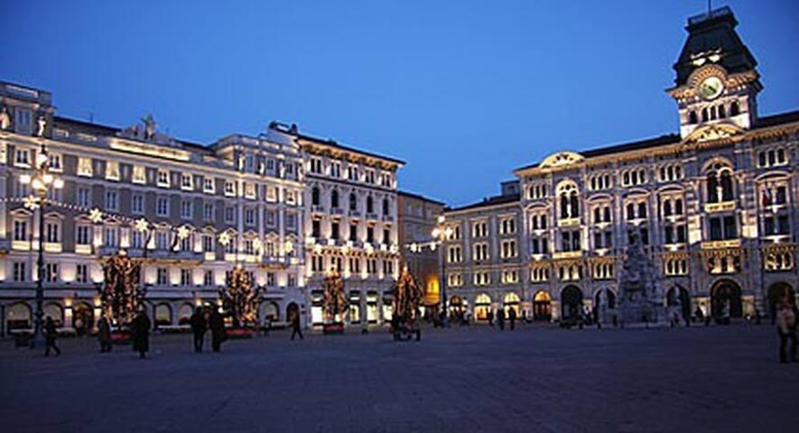 Principesco Viennese Fronte Parco - Trieste - Daire