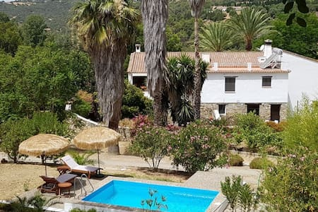 Guesthouse - Finca Vega Grande Gaucin Andalusien