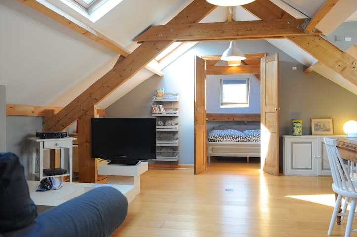 Joli appartement de 55 m2 à Uccle - Uccle - Apartament