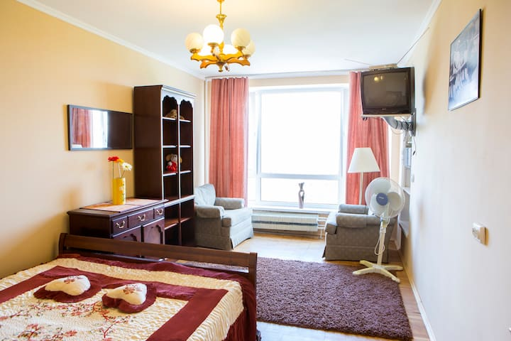 comfortable,with a view to the park - Kijów - Apartament