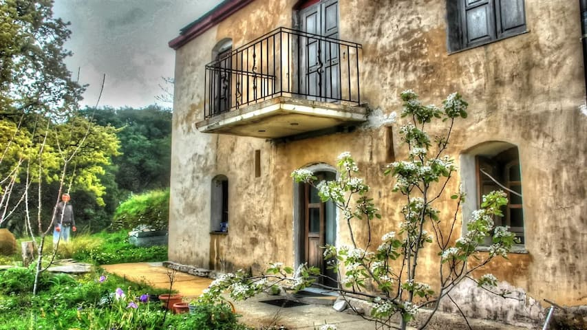 "Villa ""Katafigi"" in a quiet, magical environment - Katafigio"