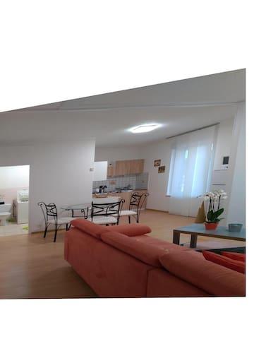 Appartement 38 m² face aux  thermes Contrexeville