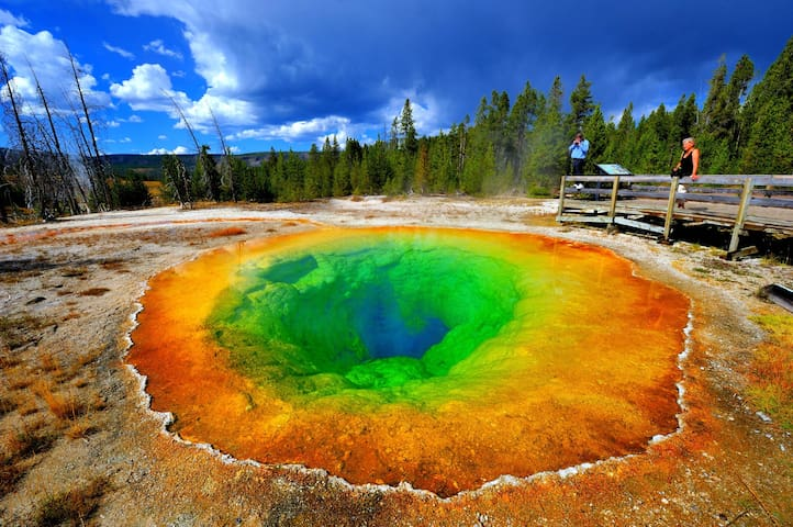 Yellowstone is just 2 hours north!