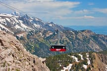 Visit Jackson Hole Mountain Resort and ride the tram to the top of Rendezvous Peak at 10,450 feet!