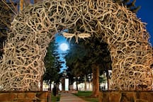 ...and at night.  We can tell you all about the history of the famous elk antler arches if you'd like.