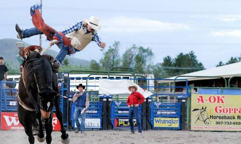 Take in a rodeo while you are in town.  The Rodeo Grounds are an 8 minute walk from our place.