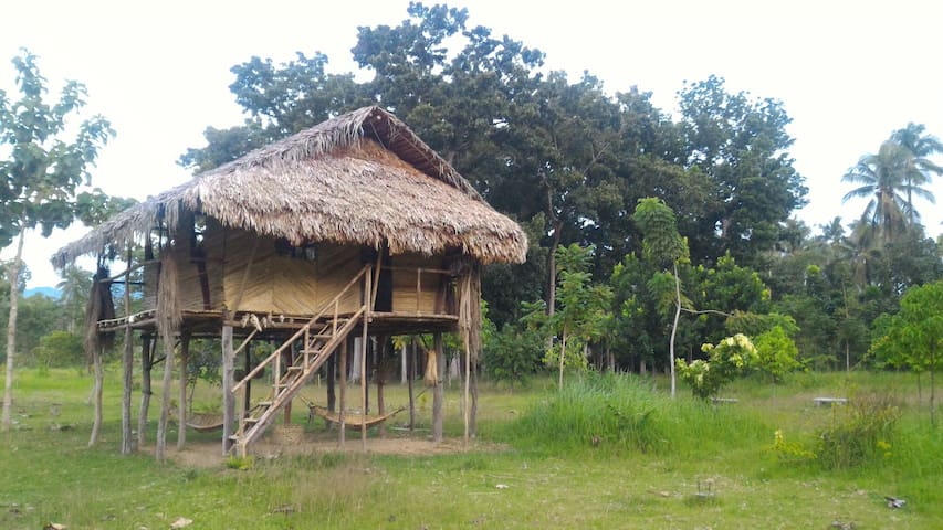 Authentic Tribal Hut inside a Private Farm - Cabadbaran City - Hut