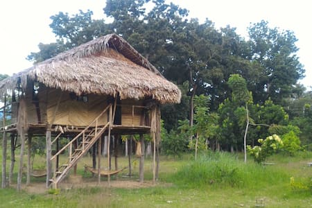 Authentic Tribal Hut inside a Private Farm - Cabadbaran City - Choza