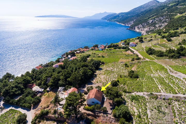 Holiday Home Blue Vineyard- Three Bedroom House with Terrace and Sea View
