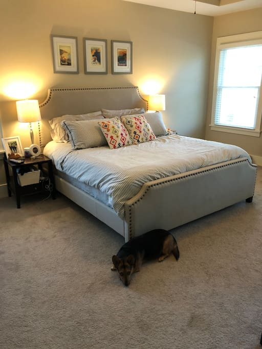 Master bedroom has a king size bed, adorable corgi will not be present.