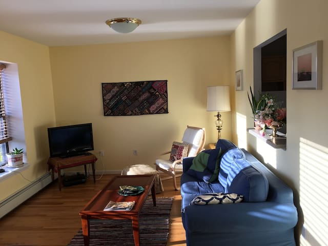 Sunny, Comfortable Space