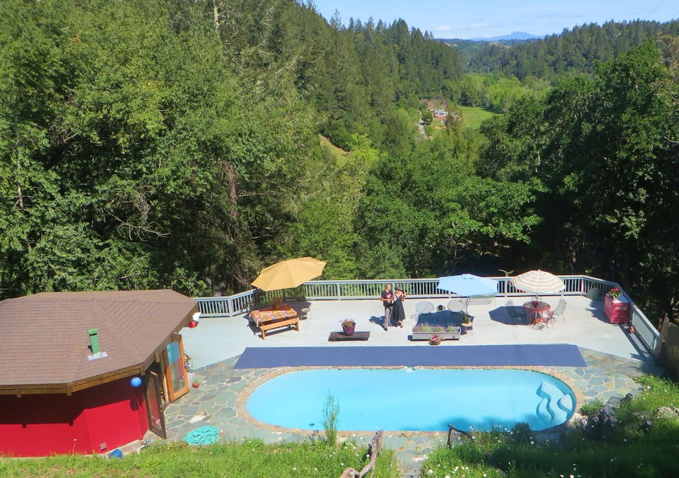 Pet friendly poolhouse russian river sonoma county for Russian river cabins guerneville