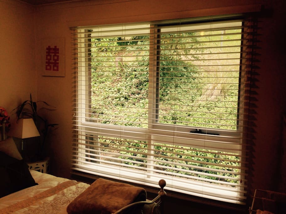 Wake up to a serene, green view from your large windows.