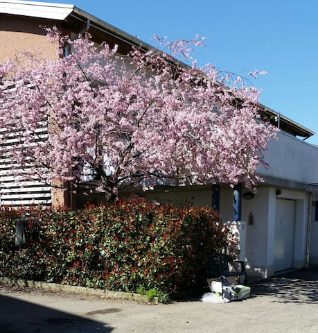 House with 4 bedrooms, 3 bathrooms - Bologna - Huis
