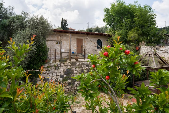 Loft in Ilaniya, Galilee, Israel - Ilaniya