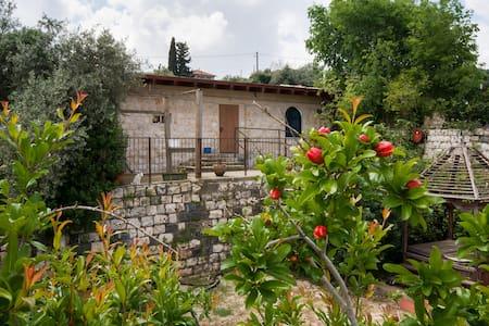 Loft in Ilaniya, Galilee, Israel - Ilaniya - Loft