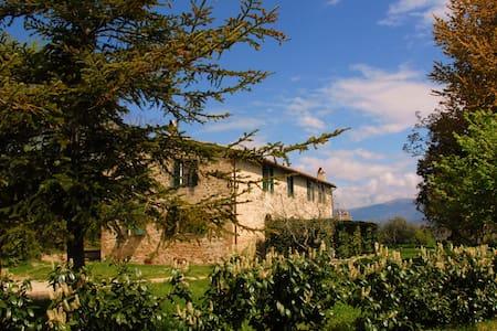 FONTE ABELLANA countryhouse