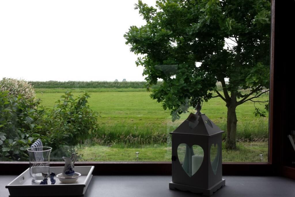 Uitzicht vanuit het chalet / view from the chalet