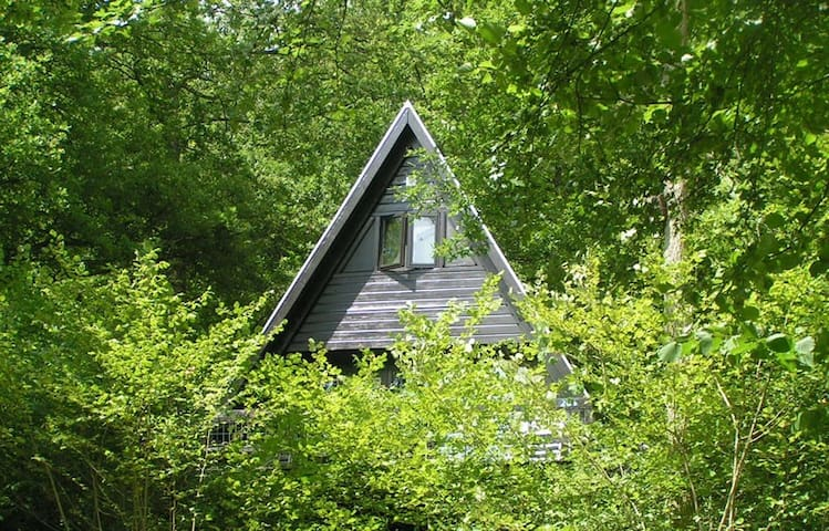 Natuurhuisje met wifi en zwembad - Durbuy - Hus