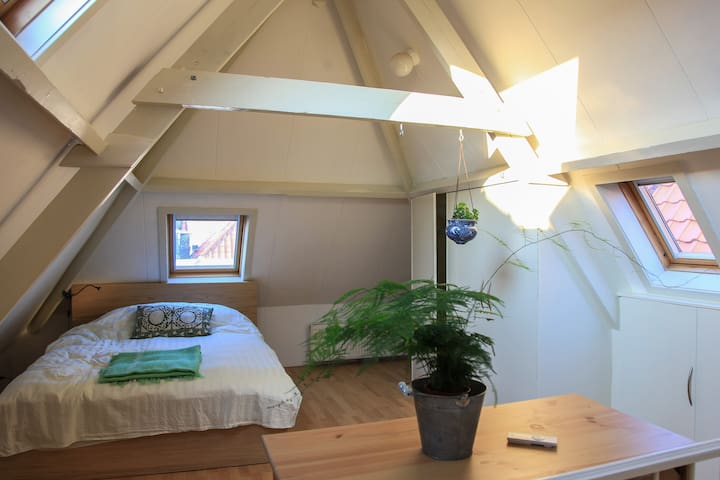 Furnished bedroom in great location - Den Haag - Byt