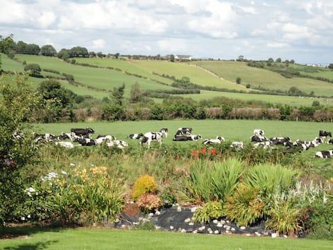 Stunning scenery. Bright, comfortable, on a farm.