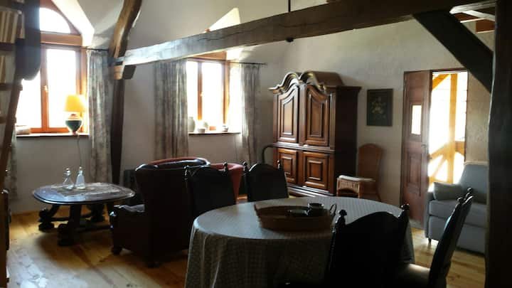 2 appartements , rustique et rurale