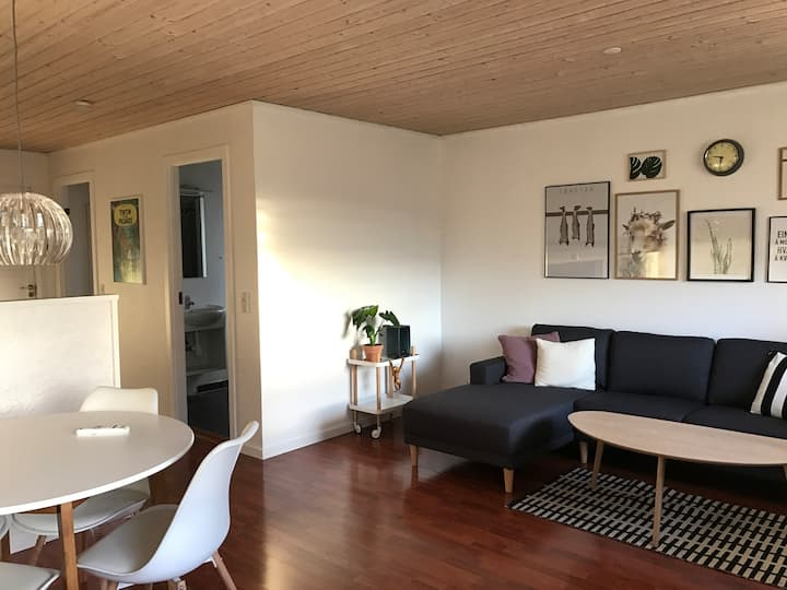 Good apartment for 3 - 4 pers with sea view