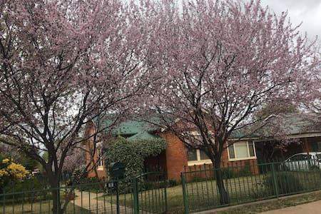 Narrandera house