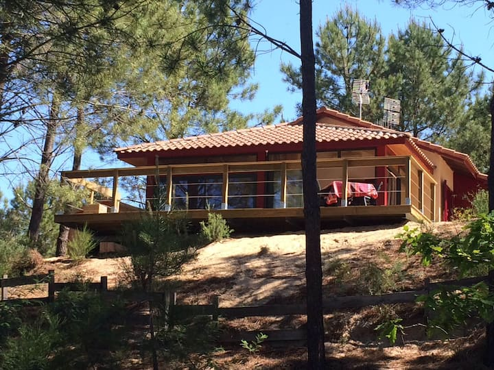 Villa de vacances sous les pins