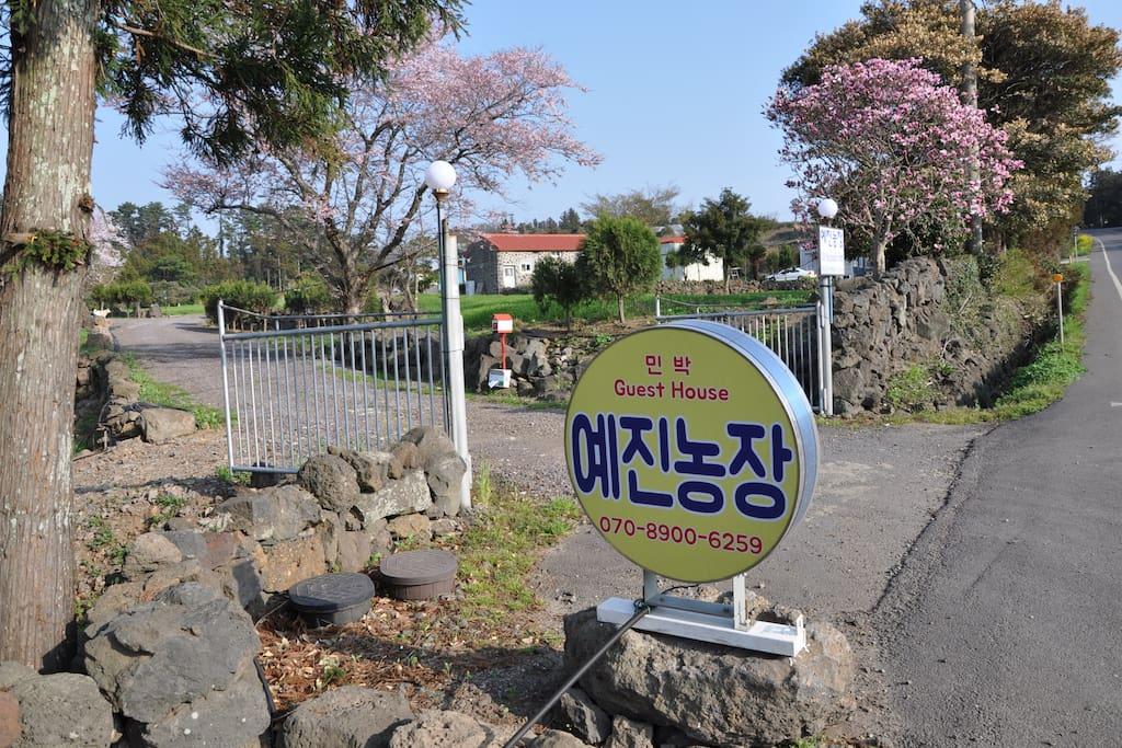 Main gate from the road, Jungsangan-Seoro.
