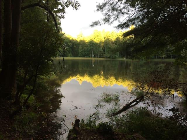 Lake Coma