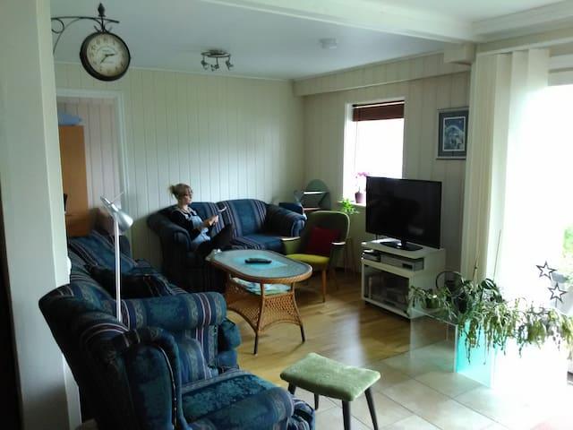 Stue/Living area