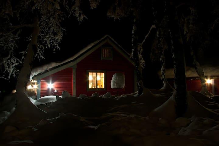 Cozy cabin in Myrkdalen