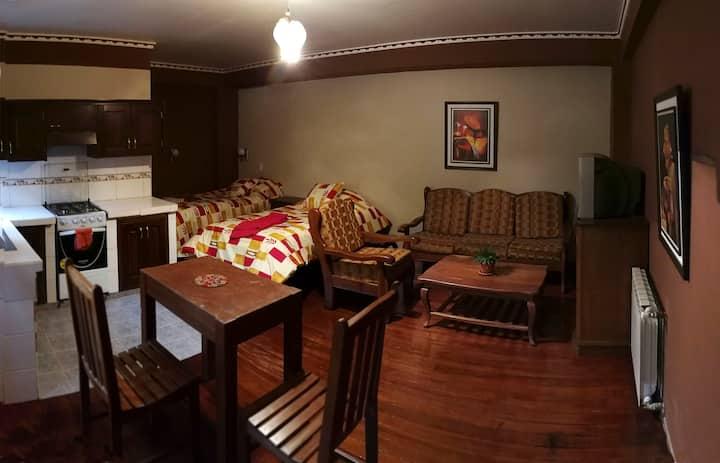 Garzonier con baño, WiFi, TV cable, sala y cocina.