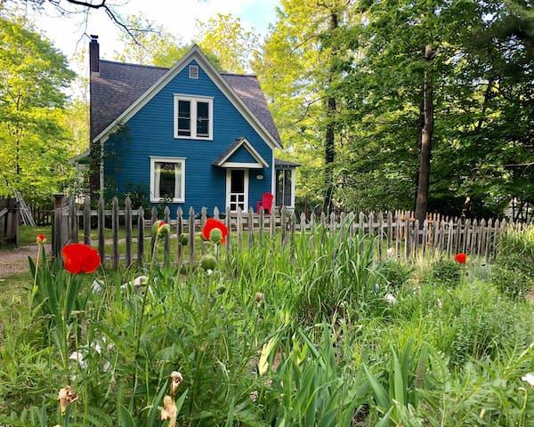Bluebird Cottage - walk to beach & Main St.