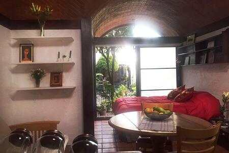 Lovely apt in Frida's neighborhood. - Ciudad de México - Apartment