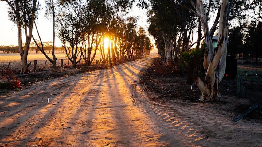 Sunrise on Nhillbilly Farm