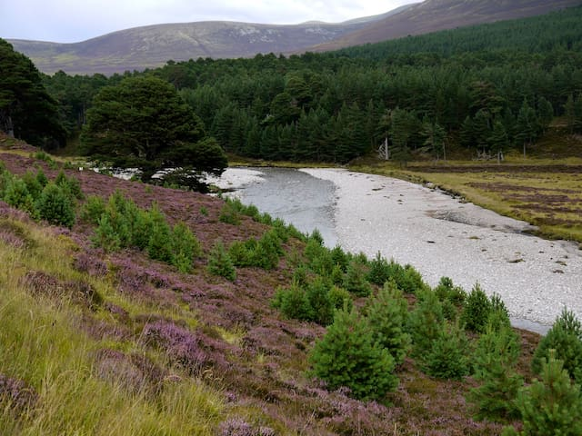 Glen Feshie - Linn of Avon Holiday Cottages