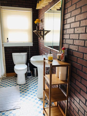 Private bathroom for guests (downstairs) with original cast iron tub and mosaic tile floor.