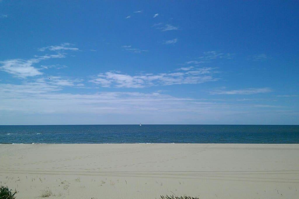 Playa de los araganes