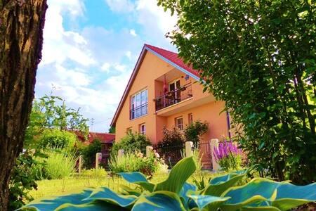 """Fewo """"Am Wanderweg"""" (Aidhausen), 115qm große Ferienwohnung am Wanderweg mit Balkon und großzügigem Gästegarten"""