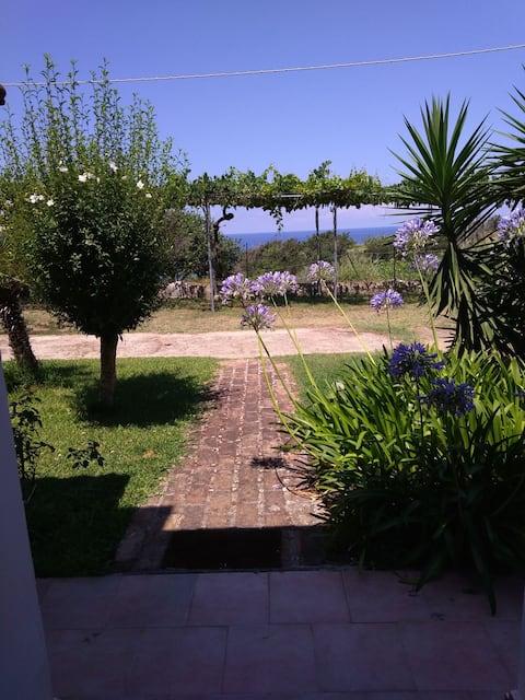 Bilocale al pianterreno vista giardino