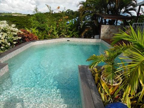 T2 rez de jardin, Ste-Anne, piscine, spa, vue mer
