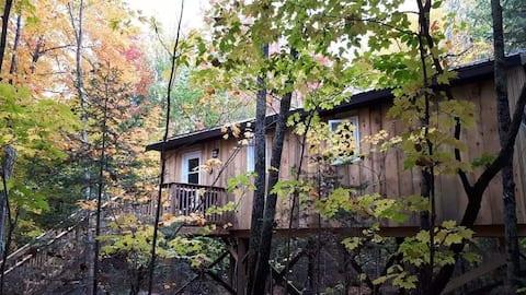 Lount Treetop Rentals - Unit 1