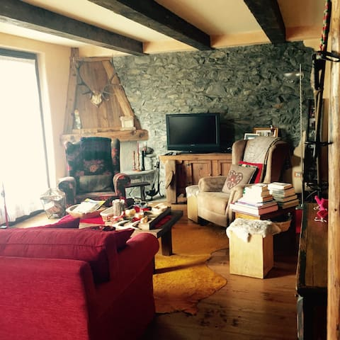 Charme 3 bedrooms chalet - Cheverel - Chalet