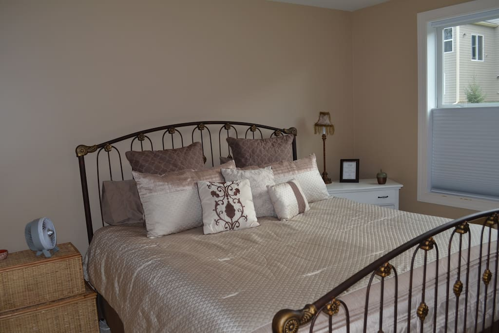 Large bedroom with natural light, king size bed, dresser and closet.