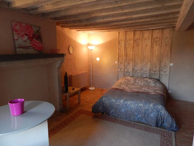 Studion meublé de caractère - Domfront-en-Champagne - Wohnung