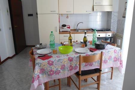 Mini appartamento con garage vicino piazze Rovigo - Rovigo - Apartment