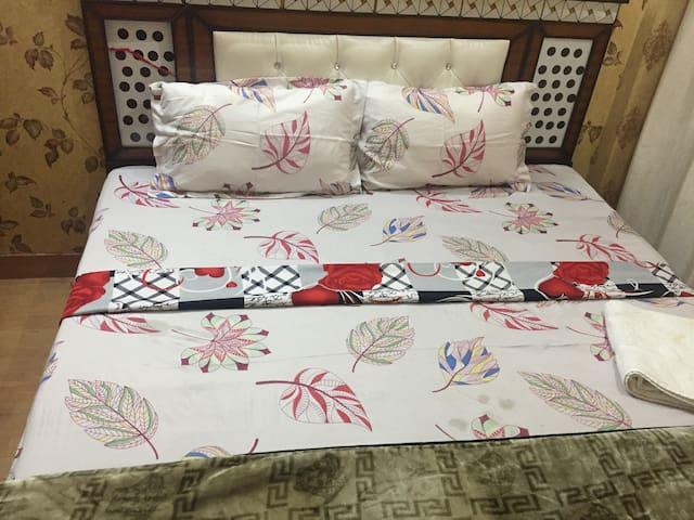 Delhi Single family home